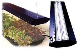 лампы для растений